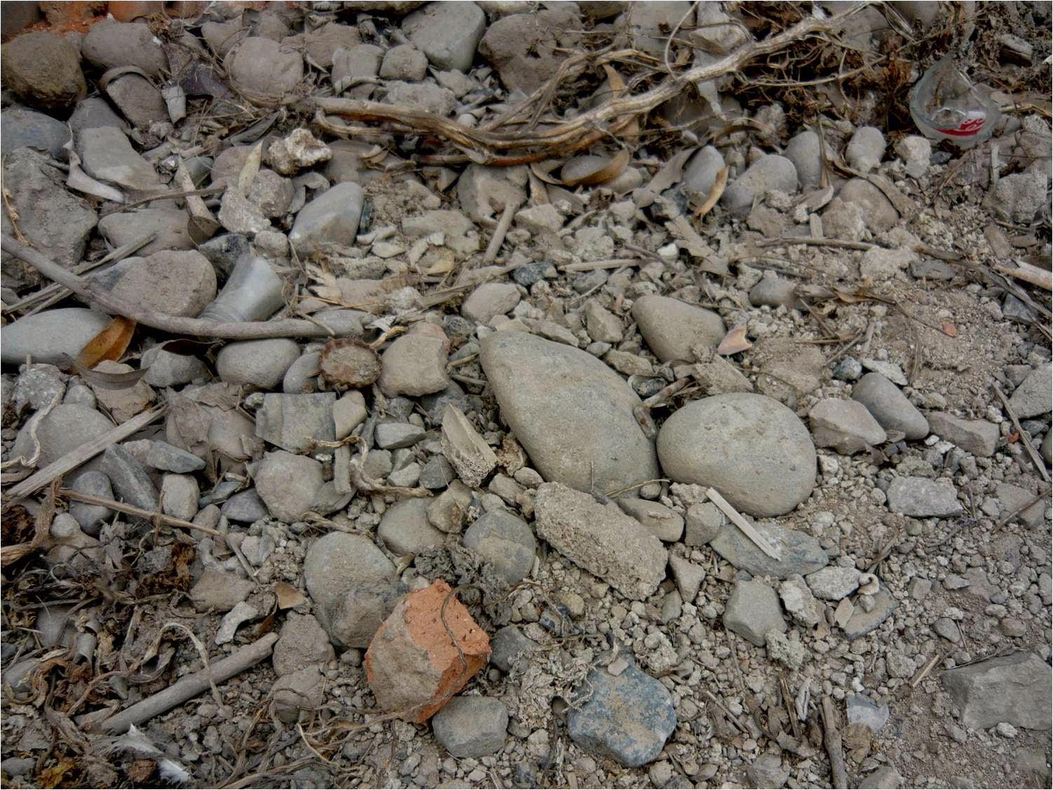 Alternativa ecol gica cultivo de hortalizas en suelos for A que se denomina suelo