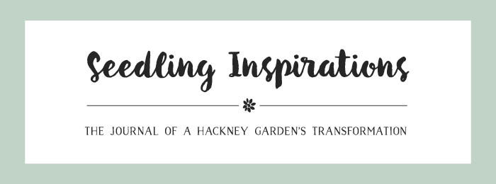Seedling Inspirations