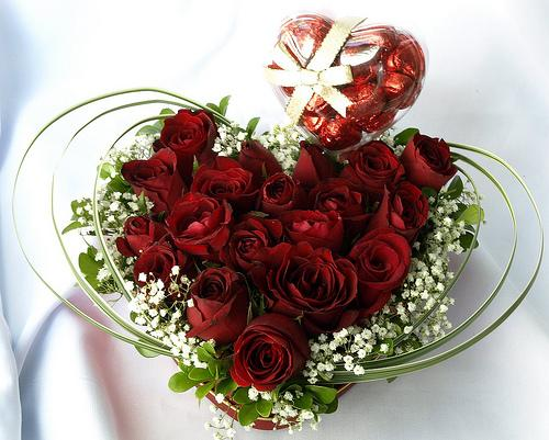 Flowers for flower lovers valentine day flowers wallpapers - Valentine s day flower wallpaper ...