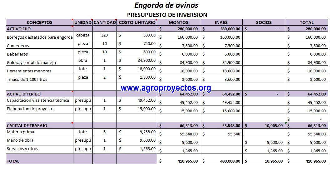 Engorda de ovinos corrida financiera agroproyectos for Ejemplo de presupuesto instalacion geotermica chalet
