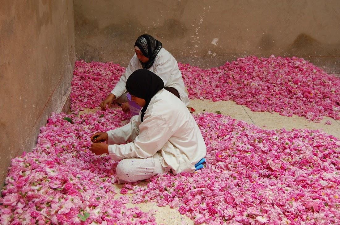 El Kelaa des Mgouna Morocco  city images : ... de la fiesta de Kelaa M'Gouna, en la que hay un amplio programa de
