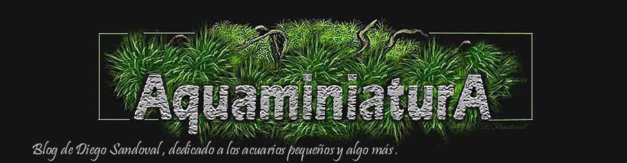 AquaminiaturA