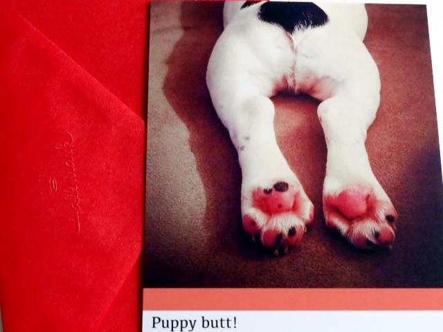 #Hallmark puppy butt! card MyWAHMPlan.com