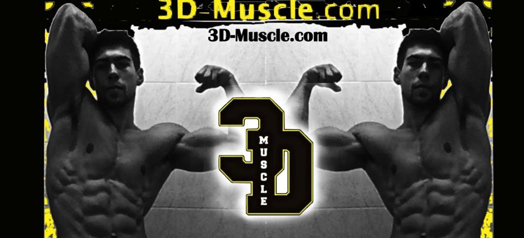 3D-Muscle.com