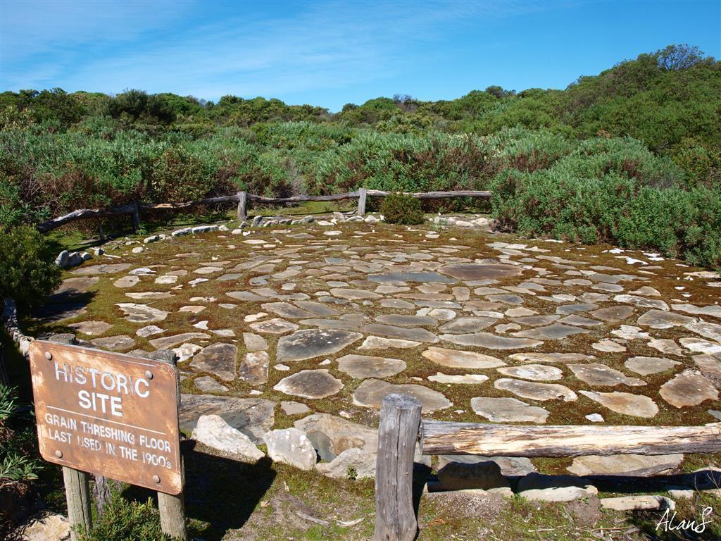 Eucalypt habitat grain threshing floor kangaroo island sa for Threshing floor