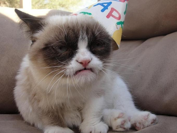 What do I want for my birthday?  How the heck do I know!