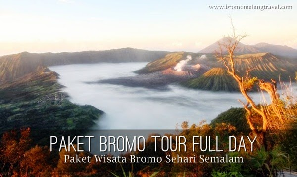 paket bromo tour full day plus