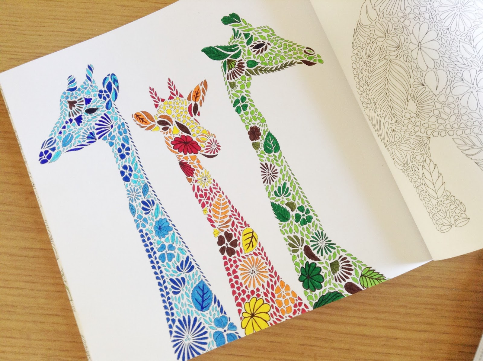 Little Book Of Colouring Animal Kingdom Millie Marotta S Sweet