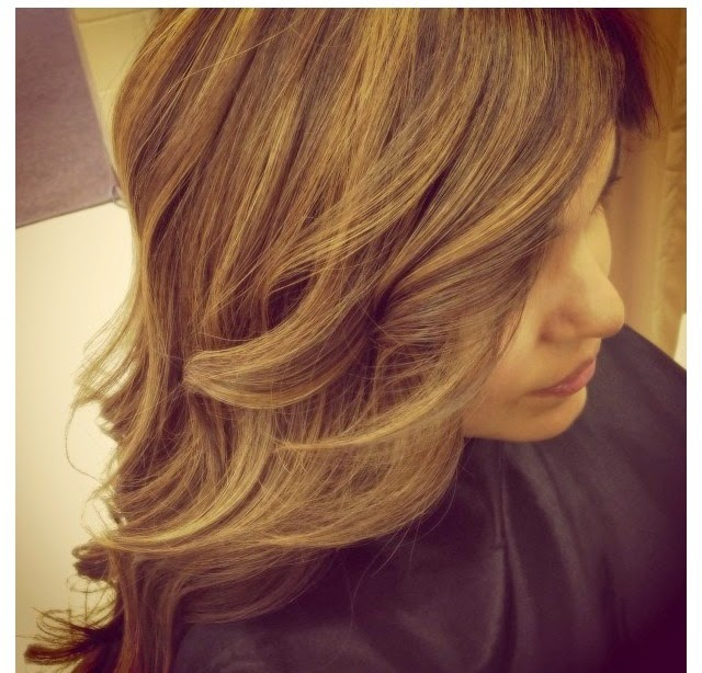 ... color (honey brown) with light caramel lowlights in the crown and top