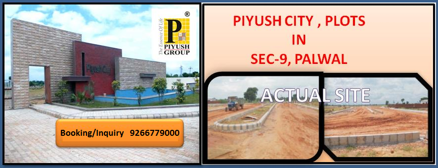 Piyush City Palwal