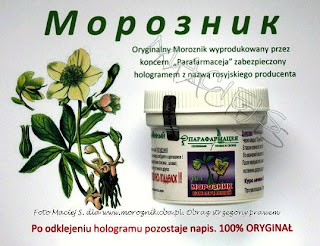 saponiny steroidowe tribulus