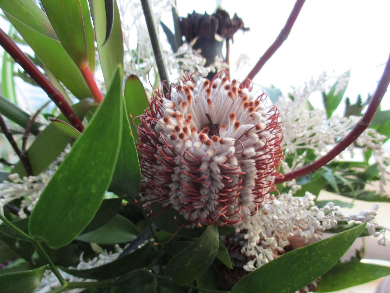 Protean valtava kukkarykelmä