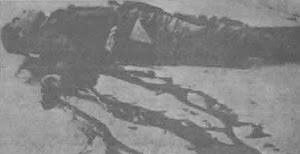 FIRENZE 1943