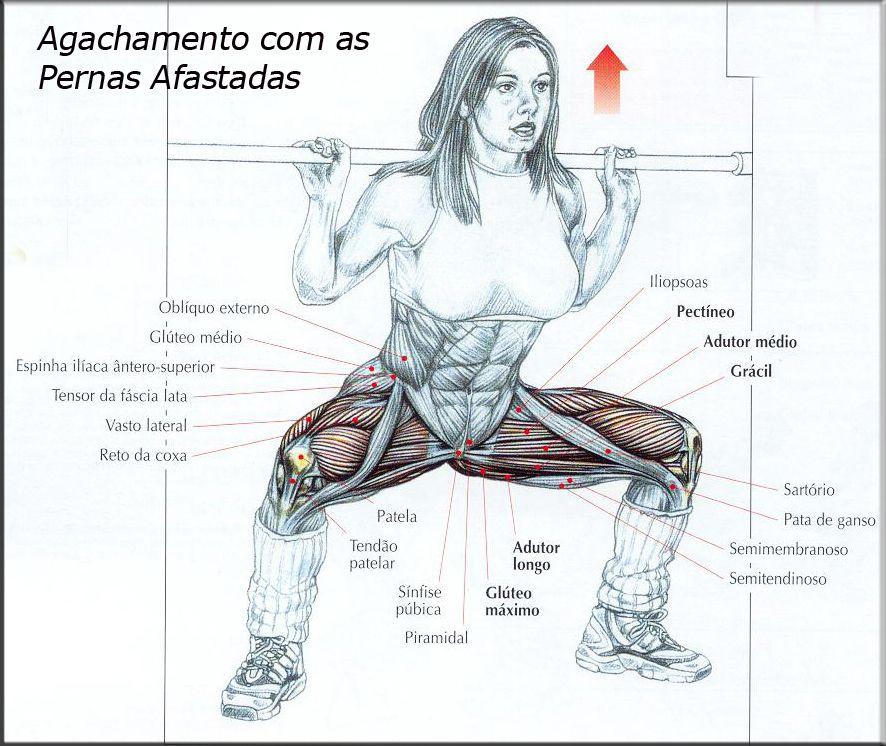 Bra O Forte Muscula O Fortale A Gl Teos E Pernas Com