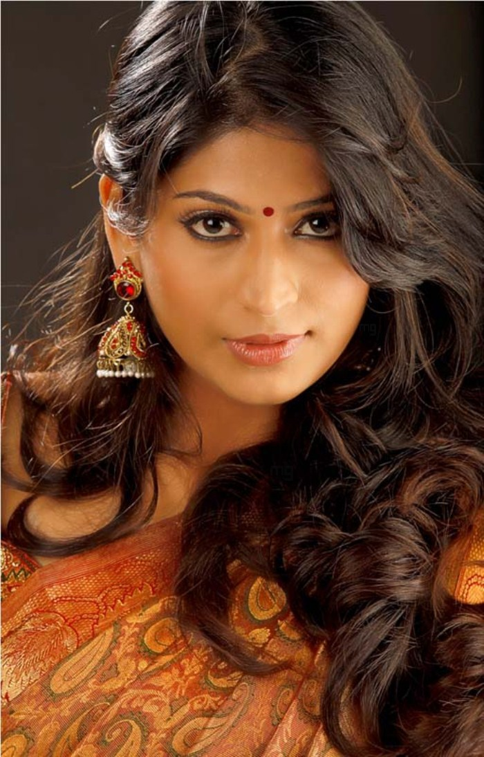 Actress Vijayalakshmi Saree