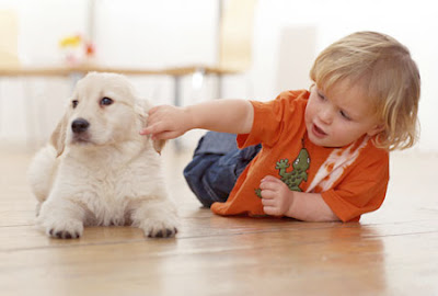 Download freely picture of baby girl kid playing with pet dog
