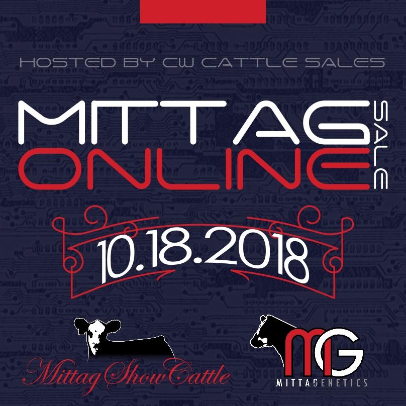 2018 Mittag Online Sale