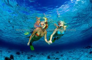 bali, dive, fish, hotels, Menjangan, National Marine Park, Nusa Penida, Padang Bai, Raja Ampat, Snorkeling in Bali, underwater, villas, water sports,