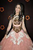 Kanika Kapoor glamorous photos-thumbnail-6