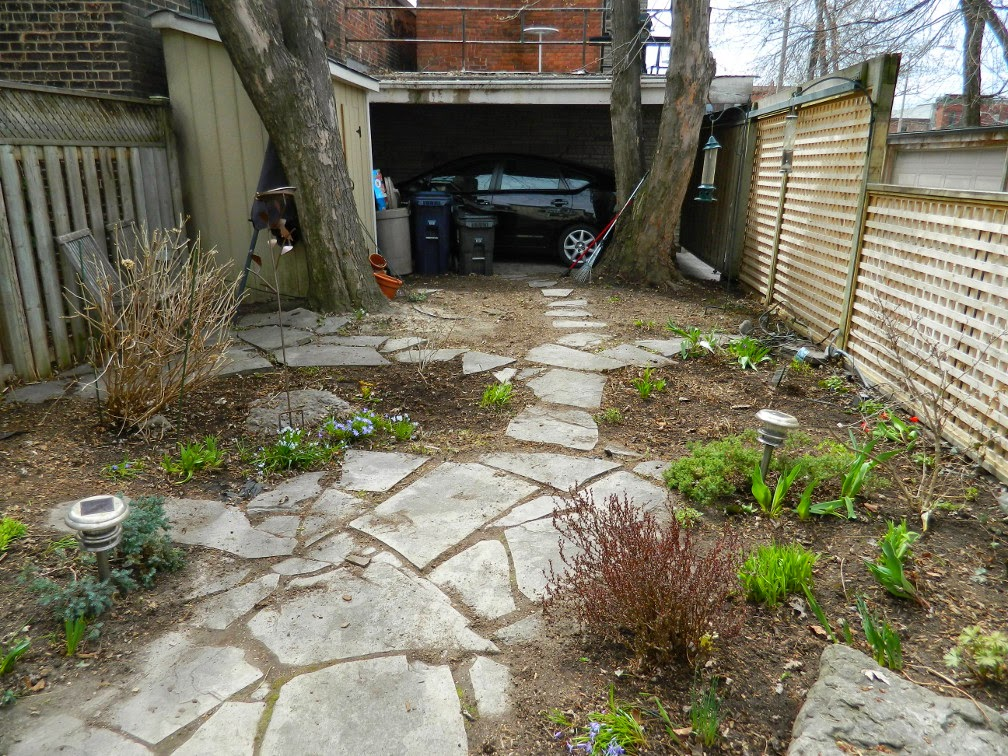 Leslieville spring garden cleanup after Paul Jung Gardening Services Toronto