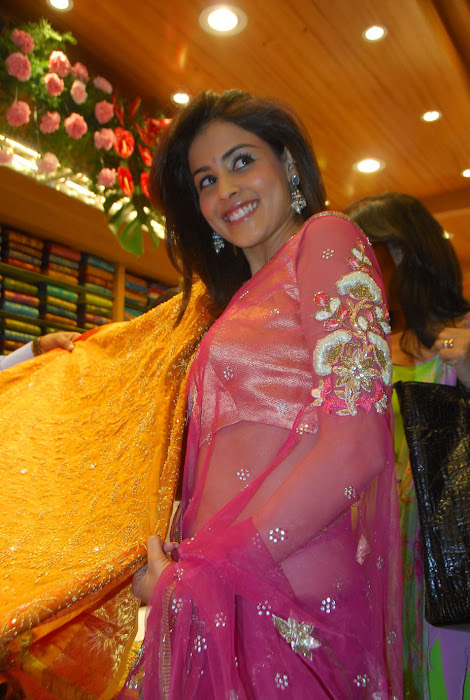 genelia dsouza photo gallery