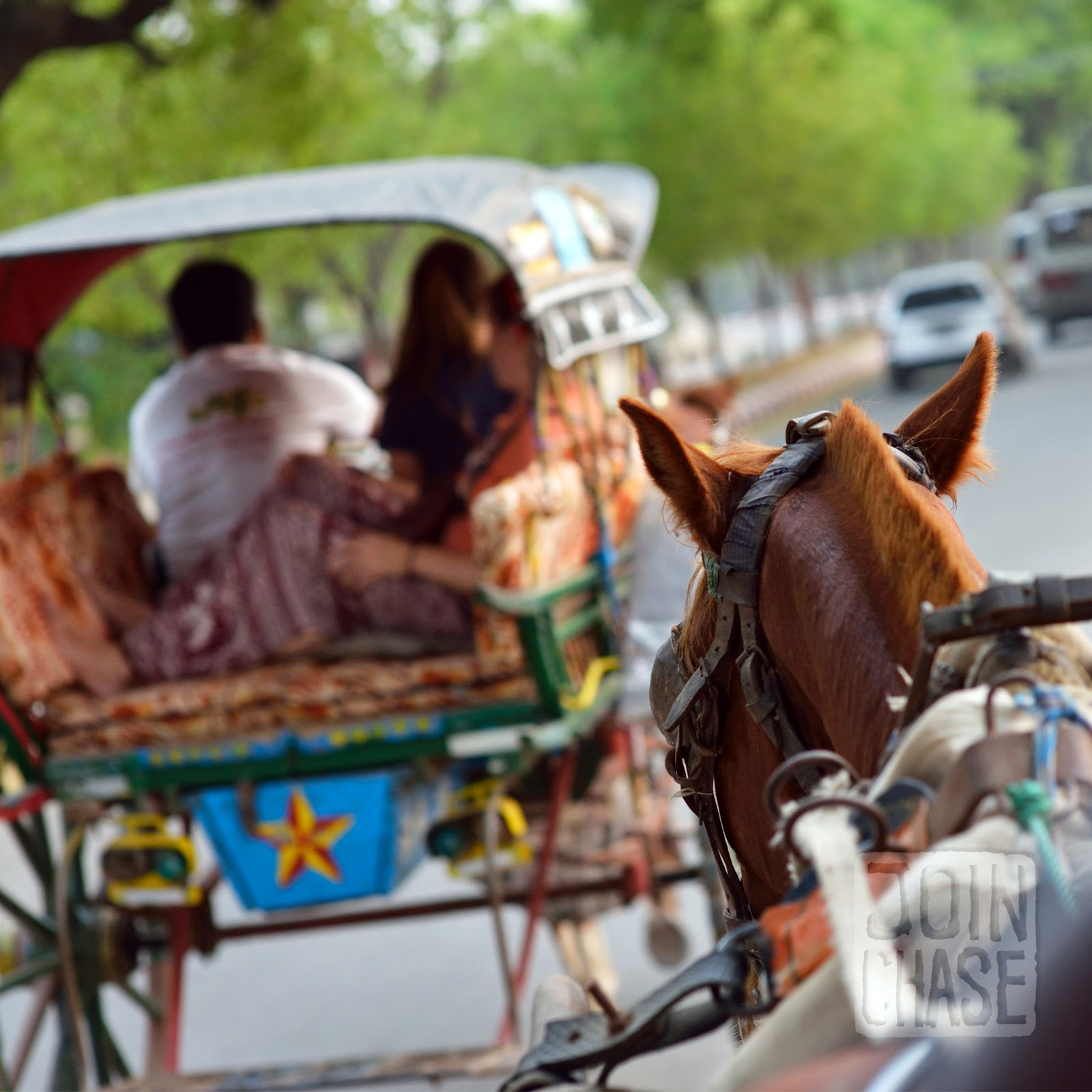 Riding around Bagan, Myanmar, on a horse and cart.