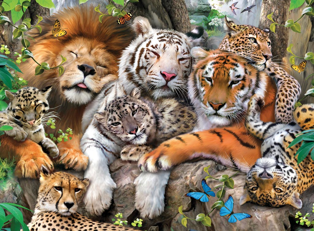 leon felinos:
