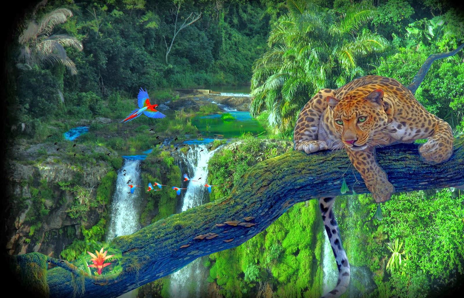 Image gallery hermosos y paisajes - Imagenes de paisajes ...
