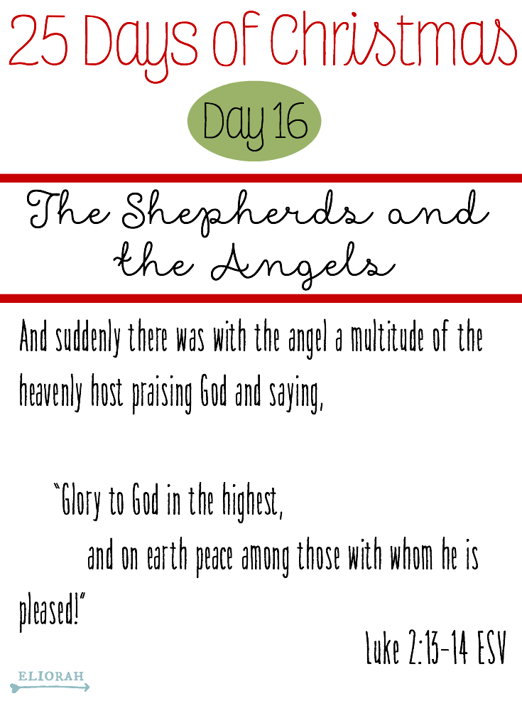25 Days of Christmas: (Day 16) Luke 2:13-14