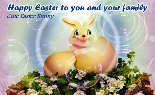Cute-Easter-Bunny-Images