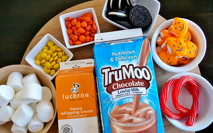 TruMoo ice cream recipe