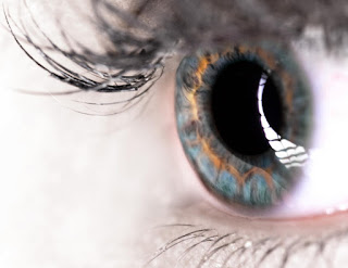 Scientists have discovered a previously undetected layer in the cornea, the clear window at the front of the human eye.