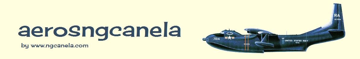 aerosngcanela