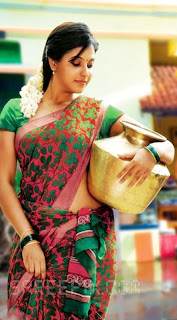 Anjali saree SVSC movie.jpg