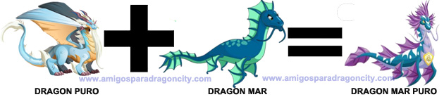 como sacar el dragon mar puro en dragon city