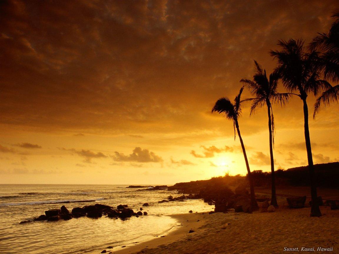 Nature Beach Sunset desktop wallpaper