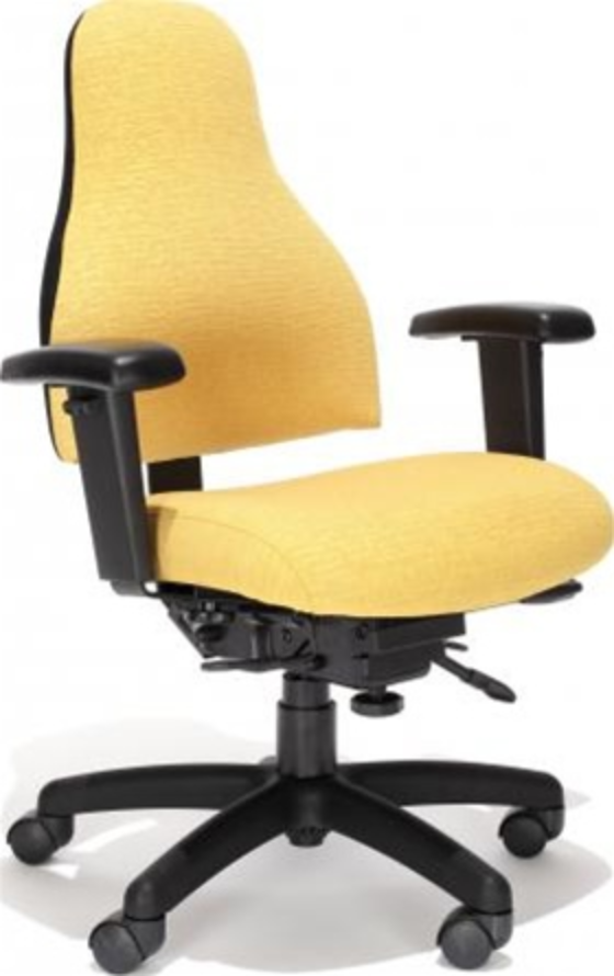 Carmel Ergonomic Office Chair by RFM