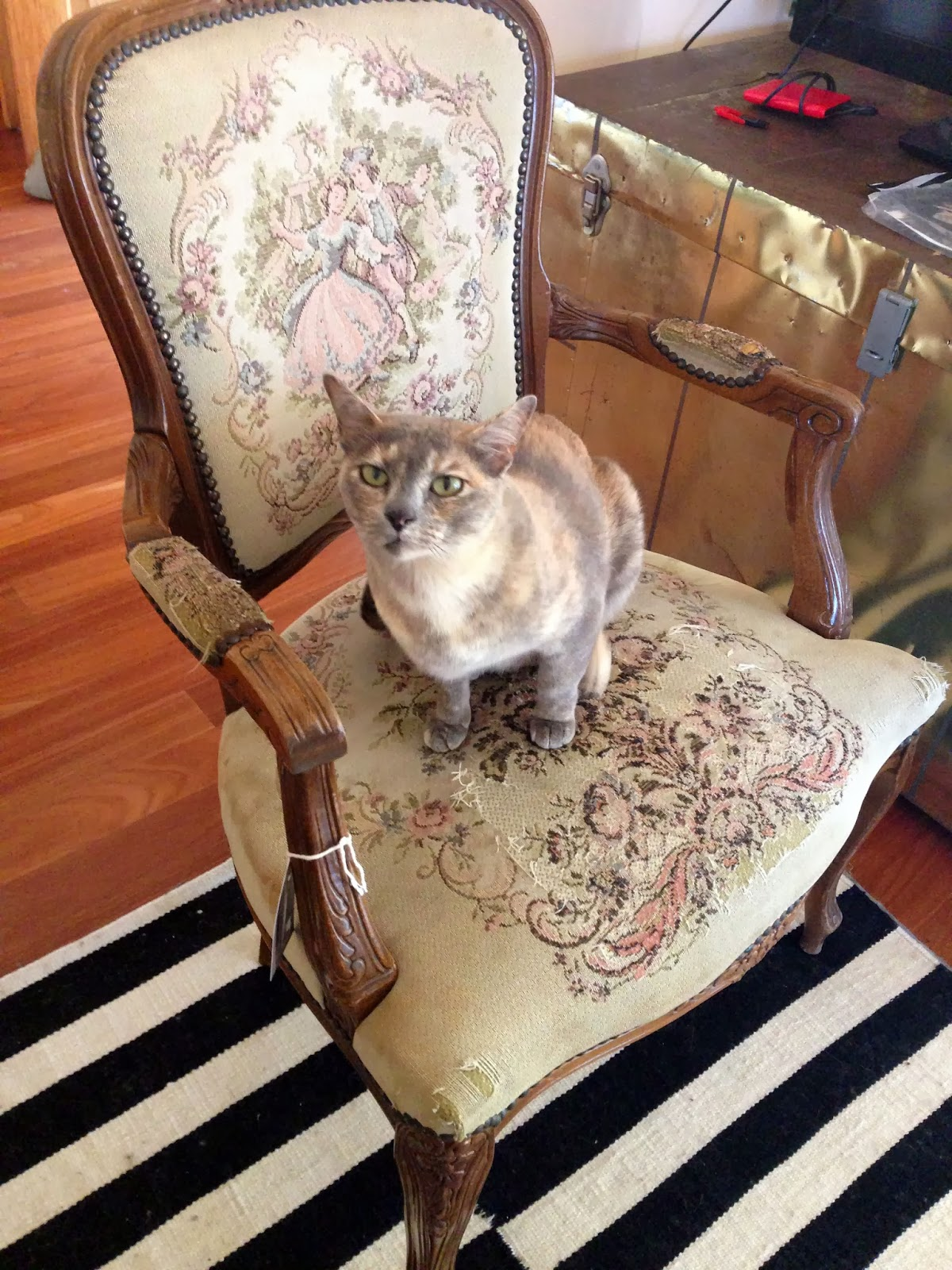 How to reupholster a louis chair - Chair As It Was When Purchased Except Without The Cat