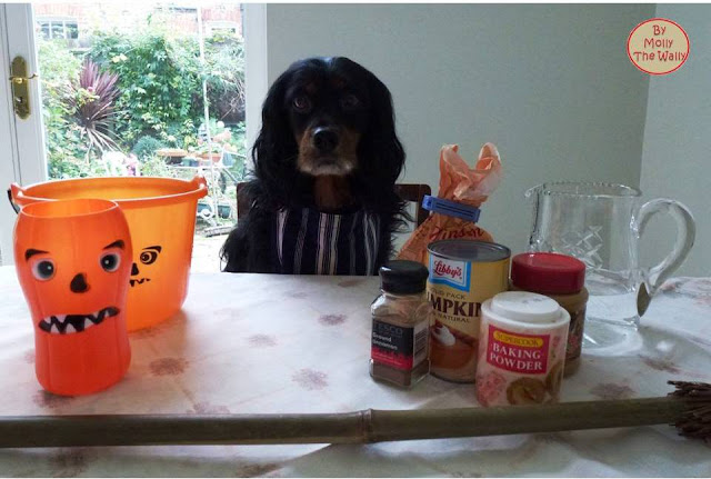Molly The Wallys' Barking Bakes for Halloween 2