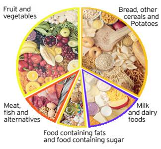 Healthy eating for adults