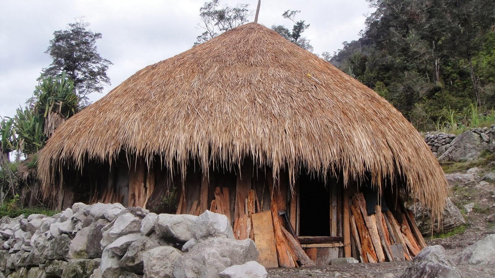 Gambar Rumah Adat Papua - Honai
