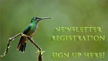 Newsletter Registation