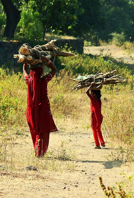 mother and child carrying firewood
