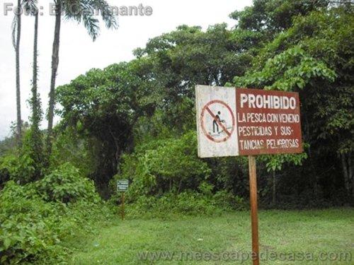 Letreros de advertencia en las orillas del río Tioyacu (Rioja, Perú)