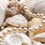 seashells and pearls