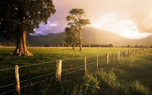 Утренний восход солнца на фотографии. Фото эффект