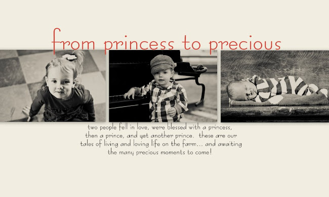 from princess to precious
