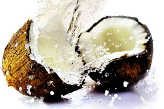health_benefits_of_eating_coconut_fruits-vegetables-benefits.blogspot.com(5)