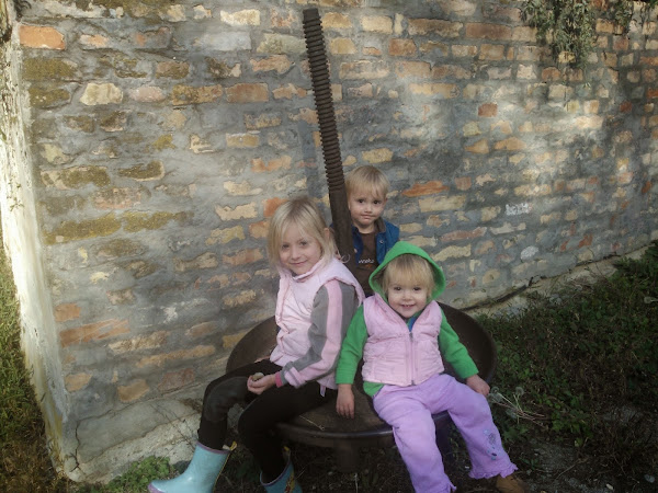 Réka, Attila és Csenge naplója