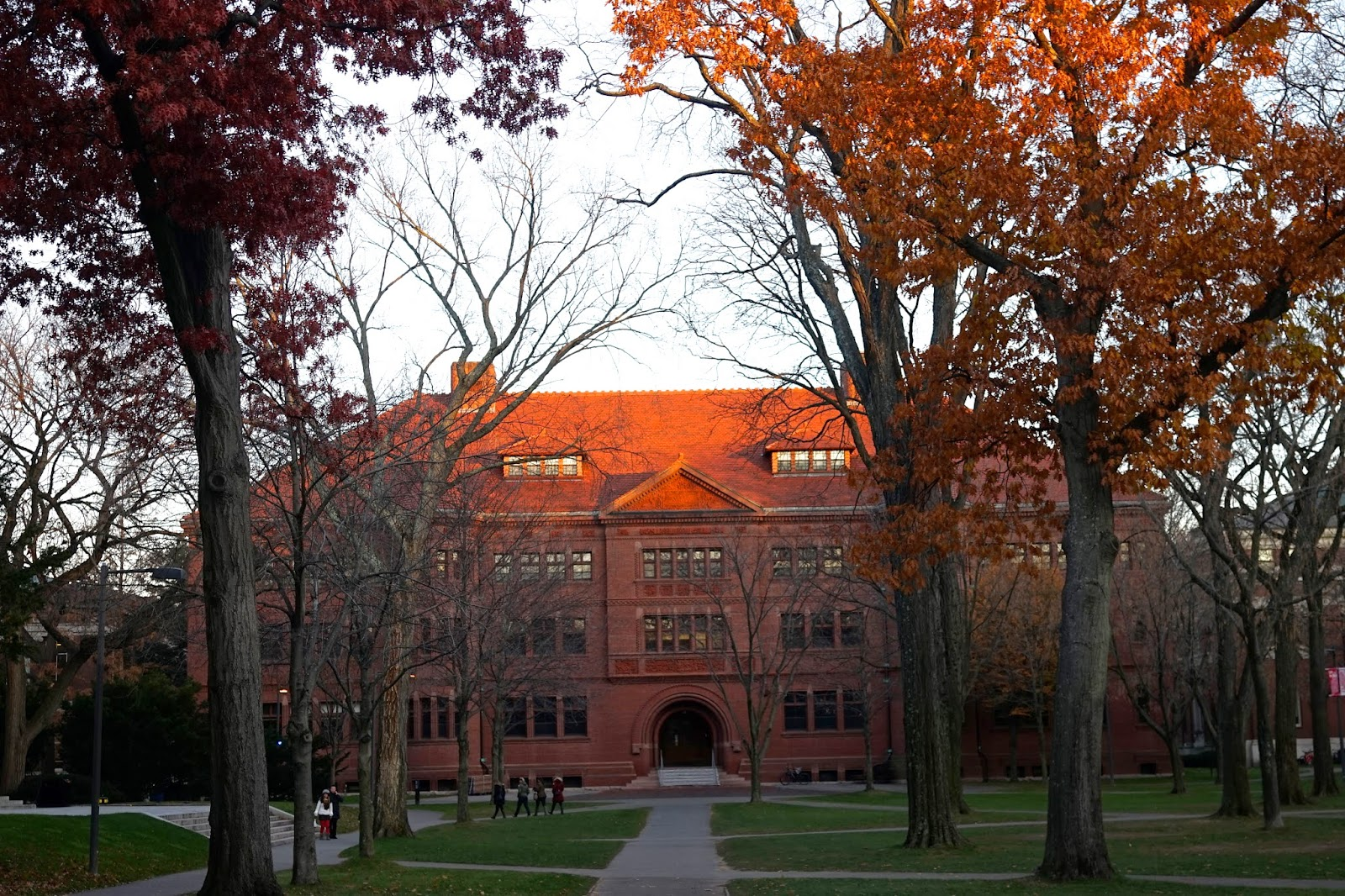 harvard autumn